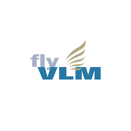 VLM Airlines
